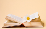short story search - flower book