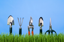 work attitude - gardening tools