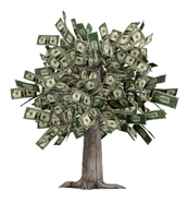 money quotes - money tree