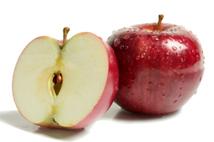 growing apples - apple seed