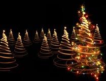 outdoor Christmas lights - Christmas trees