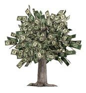 money quotes - money tree