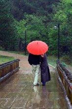 kissing bridge - under umbrella
